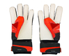 Goalkeeper gloves Puma evoPower Grip 2.3 RC with the original signature of Petr Cech